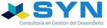 Consultora SYN